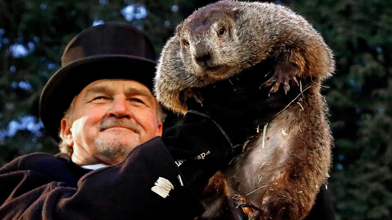 Groundhog Club handler John Griffiths holds Punxsutawney Phil, the weather prognosticating groundhog, during the 131st celebration of Groundhog Day on Gobblers Knob.