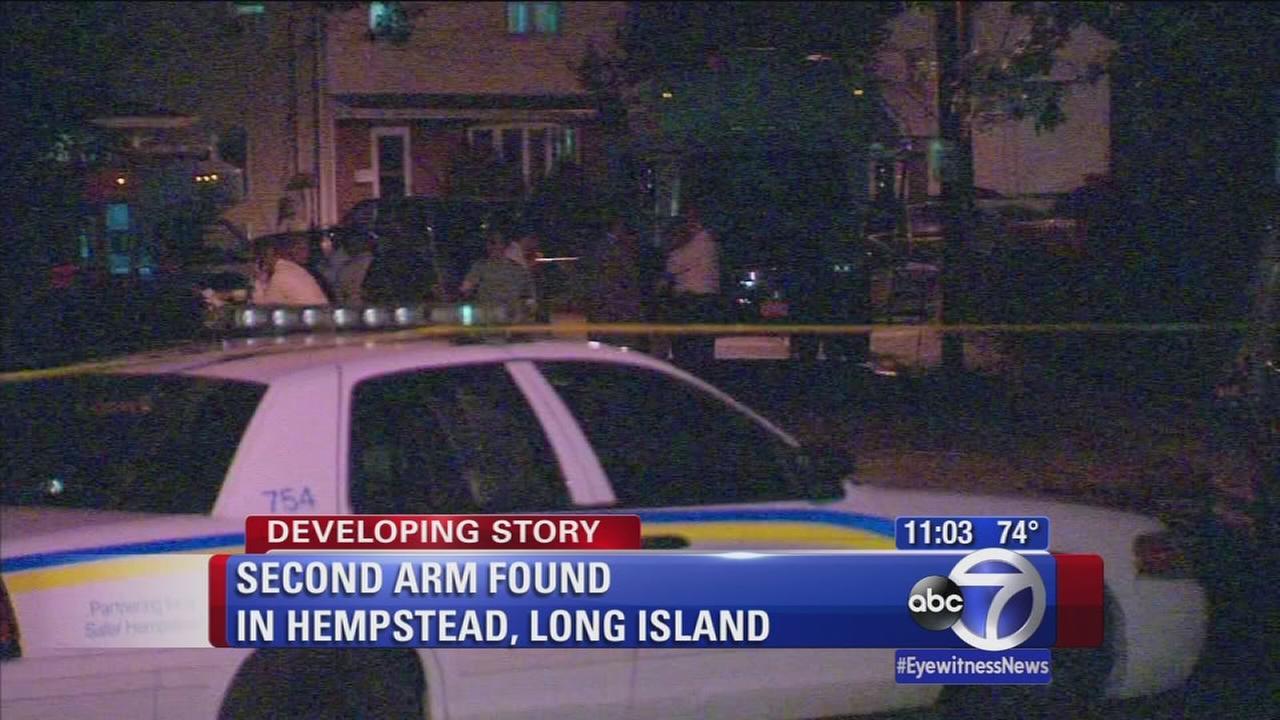 Second arm found in Hempstead