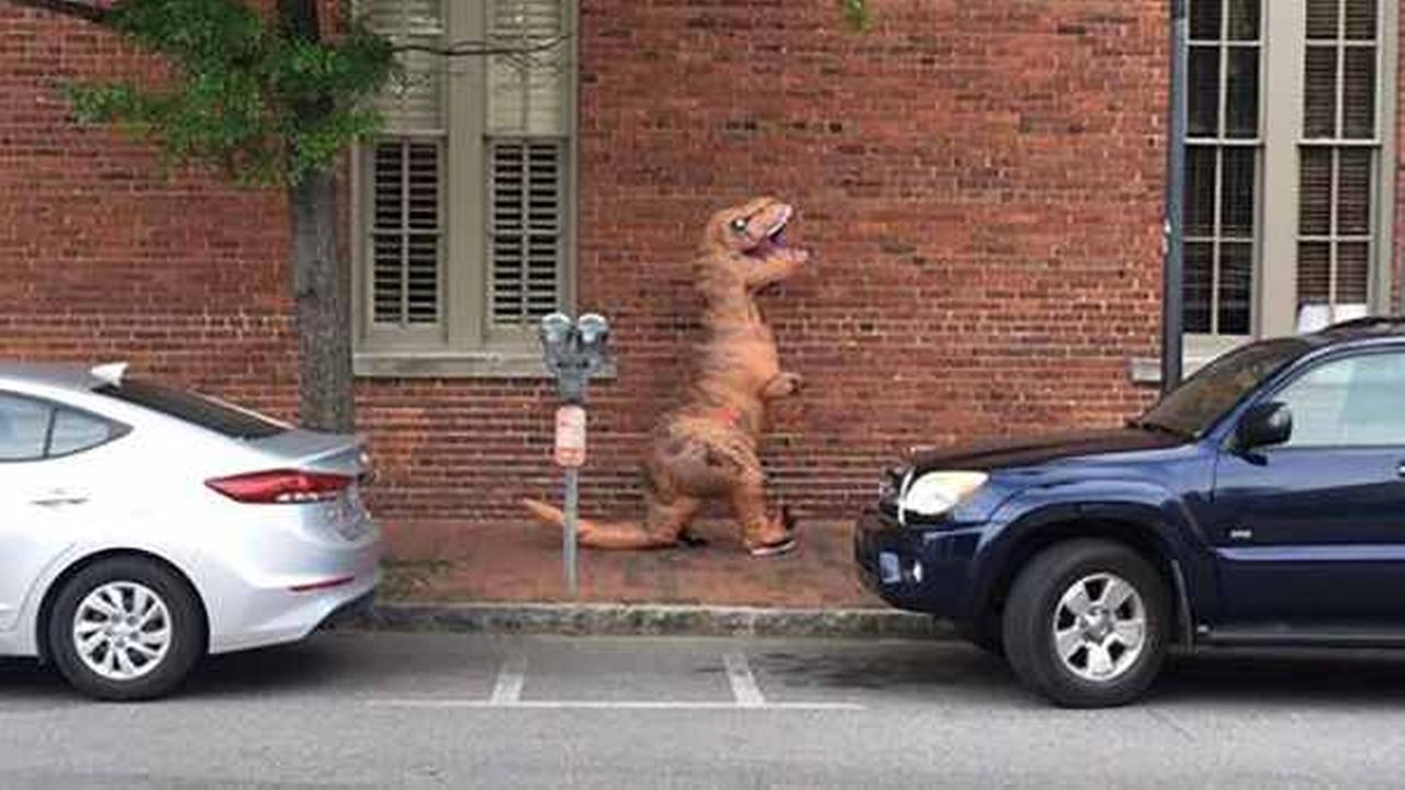 Someone in Charleston wearing a Tyrannosaurus rex costume started growling Thursday when the carriage passed.