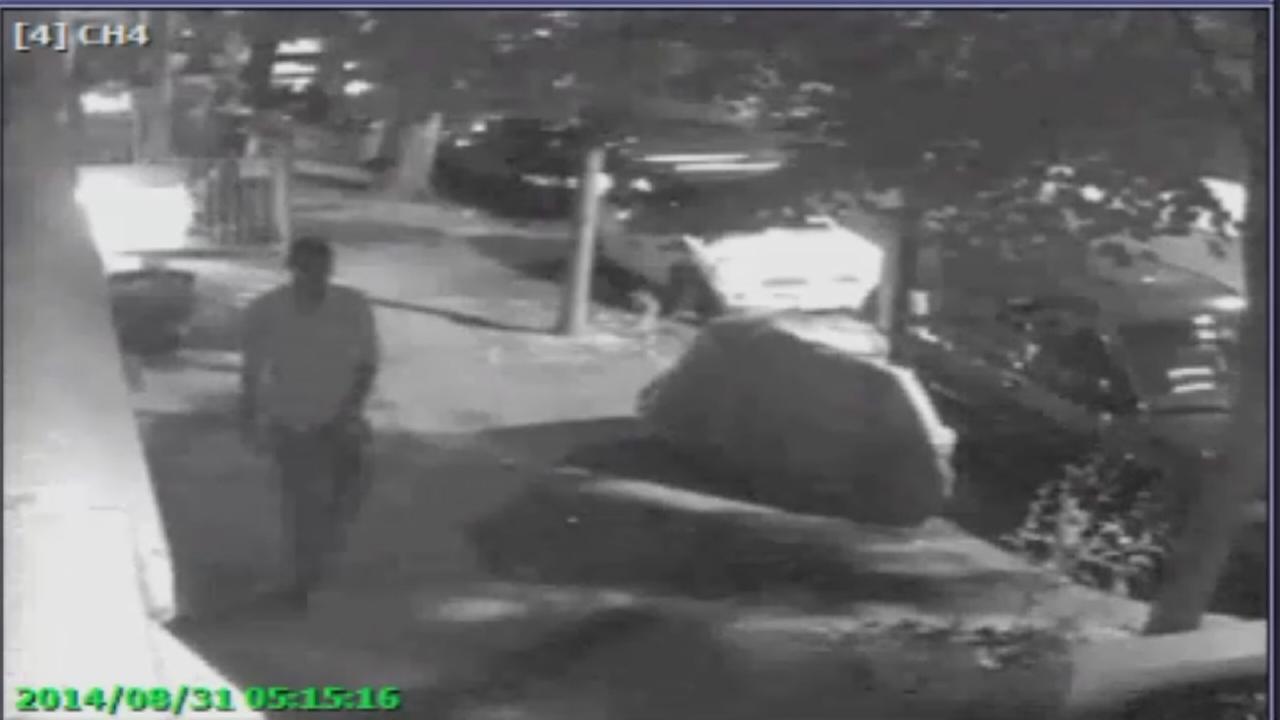 Suspect caught on video after Brooklyn sex assault