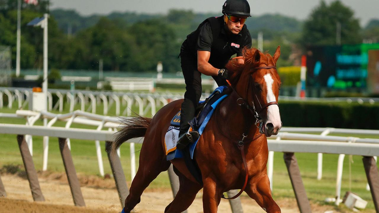 Triple Crown hopeful Justify gallops around the main track during a workout at Belmont Park, Friday, June 8, 2018, in Elmont, N.Y.