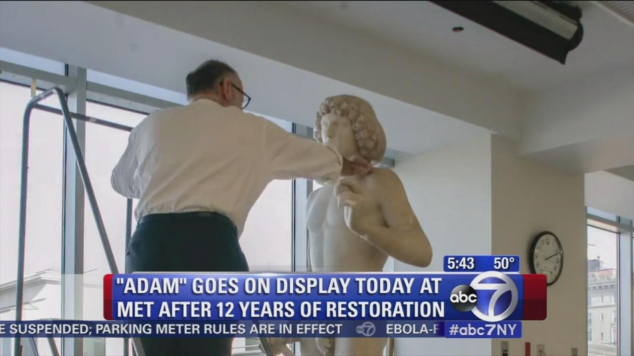 Adam statue goes on display after 12-year restoration