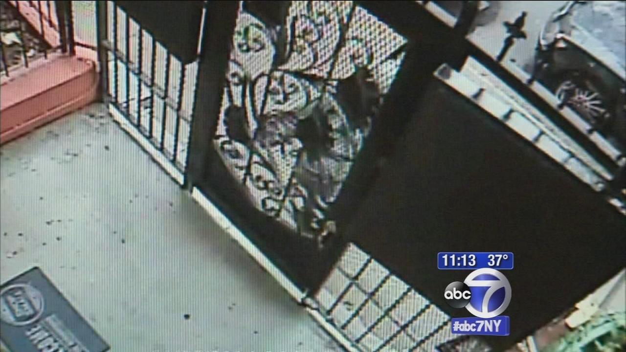 FedEx deliveryman caught on camera smashing gate