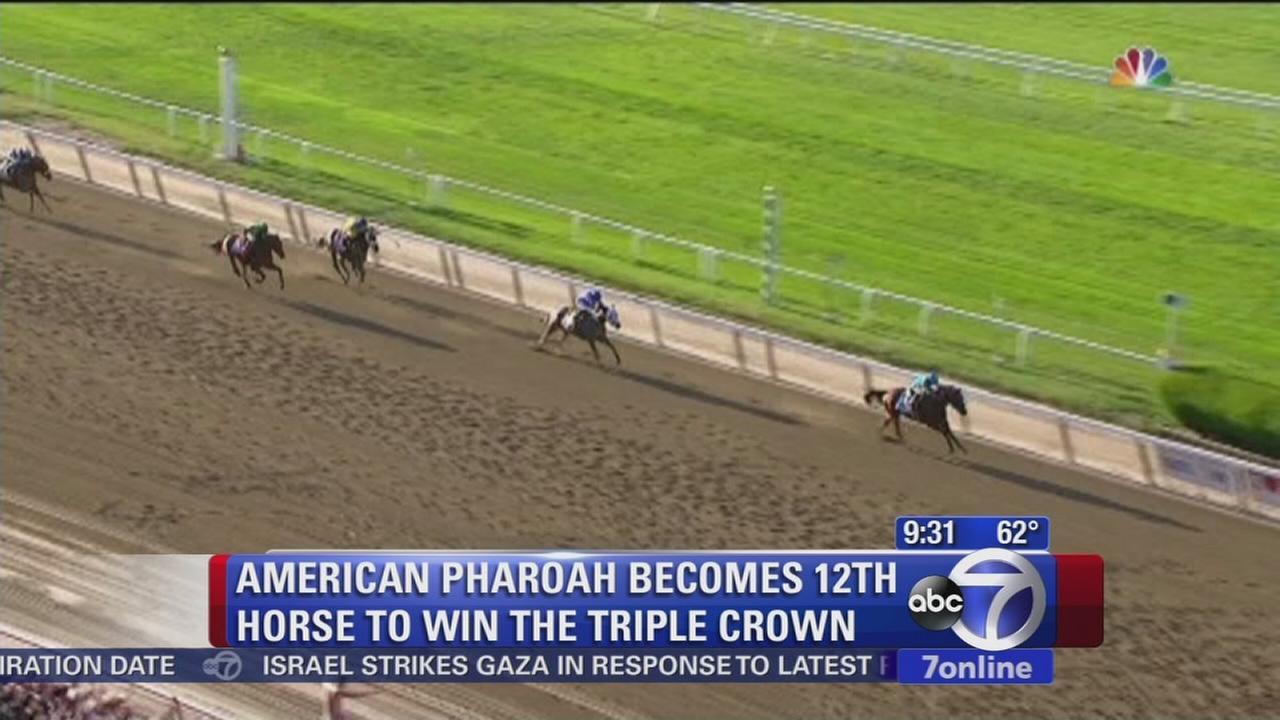 American Pharoah races off with Triple Crown