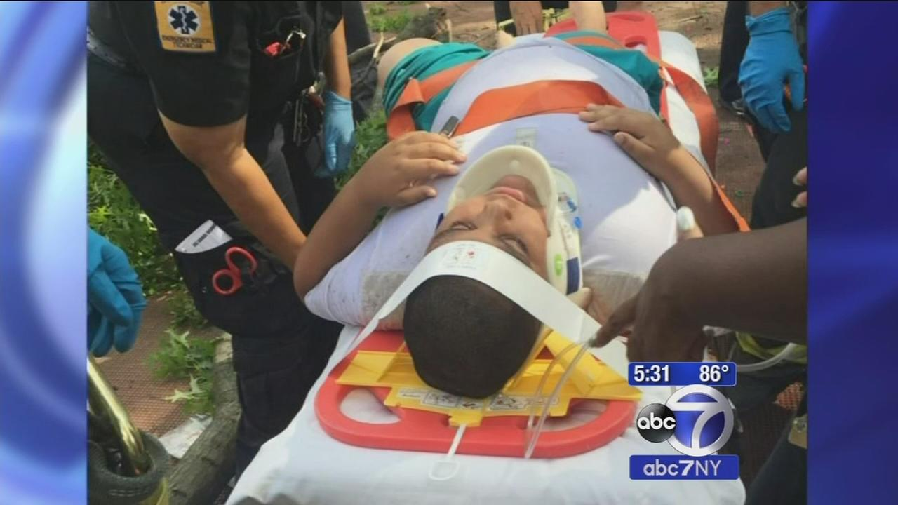 2 children hurt when tree branch falls on them in the Bronx