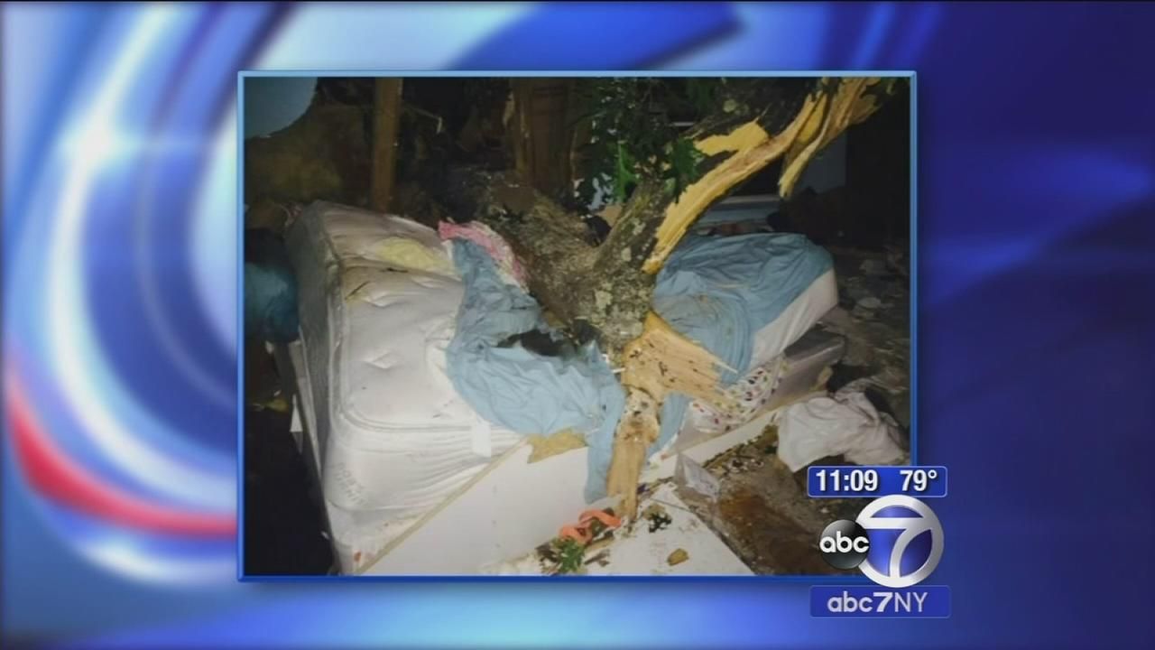 Sleeping position likely saved womans life after tree fall