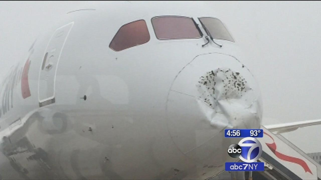 Hail damages Dreamliners nose during American Airlines flight, prompts emergency landing