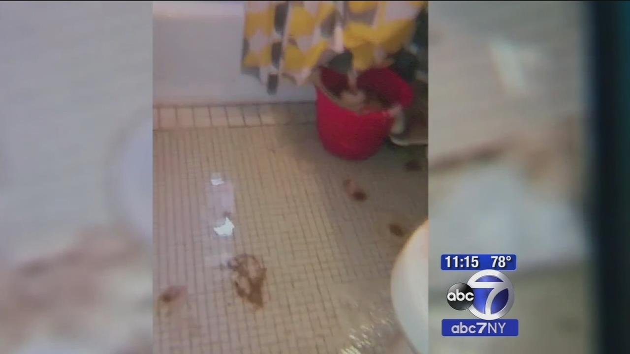 Queens apartments flooded with raw sewage