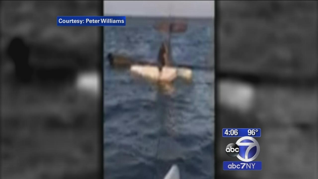 Pilot found standing on wing after plane crashes into Great South Bay