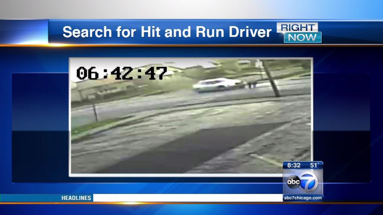 Police search for driver in Ashburn hit-and-run