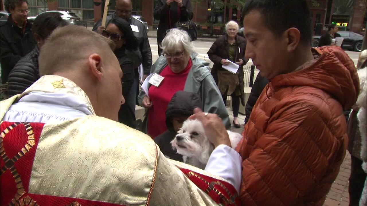 'Blessing of the Animals' recognizes spiritual attachment to pets