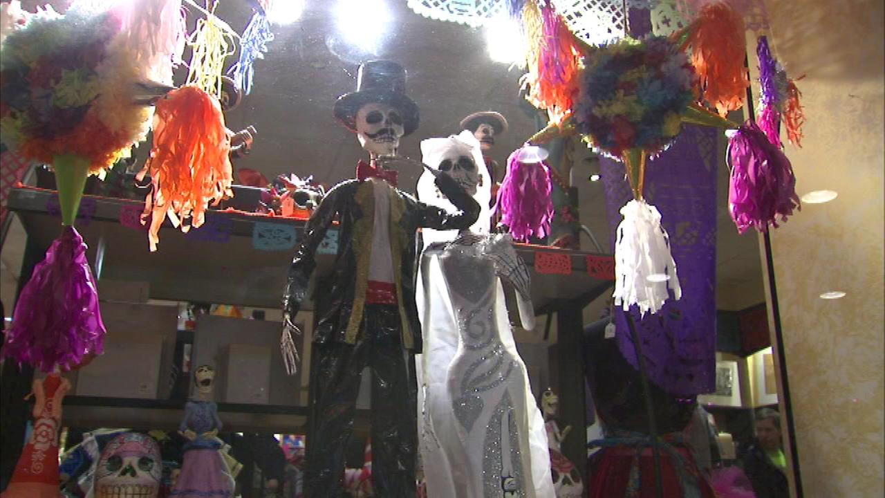 Once Halloween is over, the fun continues as preparations are underway at the National Museum of Mexican Art for Sundays Day of the Dead celebration.