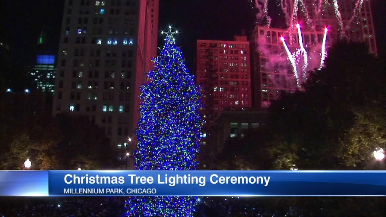 city accepting nominations for official christmas tree - Christmas Tree In Chicago