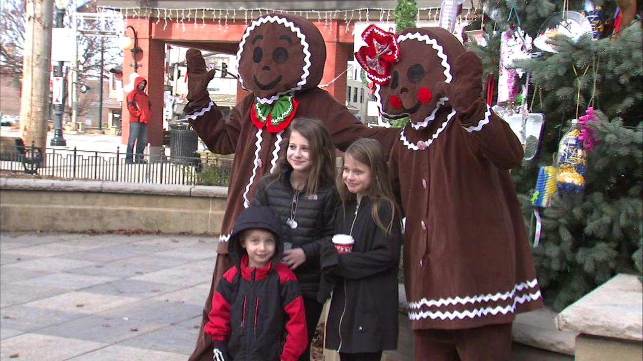 Families gathered for the annual Gingerbread Festival in Downers Grove Sunday.