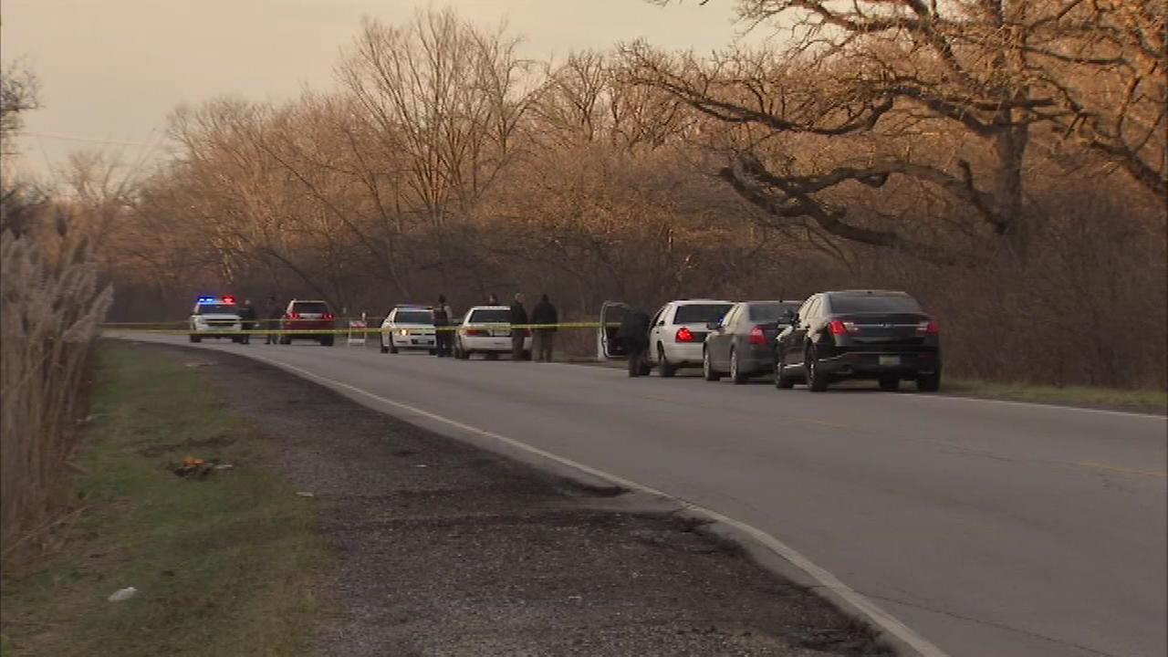 Body found near woods in suburban Harvey, police say