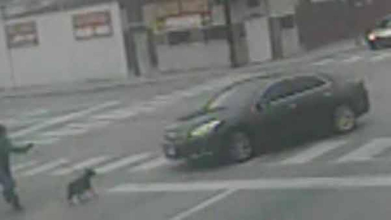 Police released this photo of a dark-colored four-door car just before it hit the woman and her dog as they crossed Damen at 59th Street.