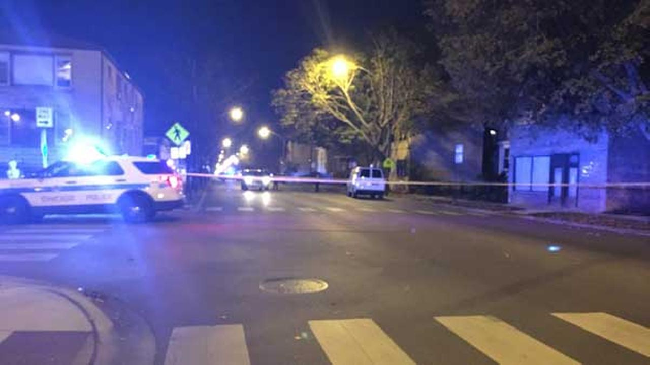 A 2-year-old girl was fatally struck by a vehicle on Sunday in the Northwest Side Jefferson Park neighborhood, police said.