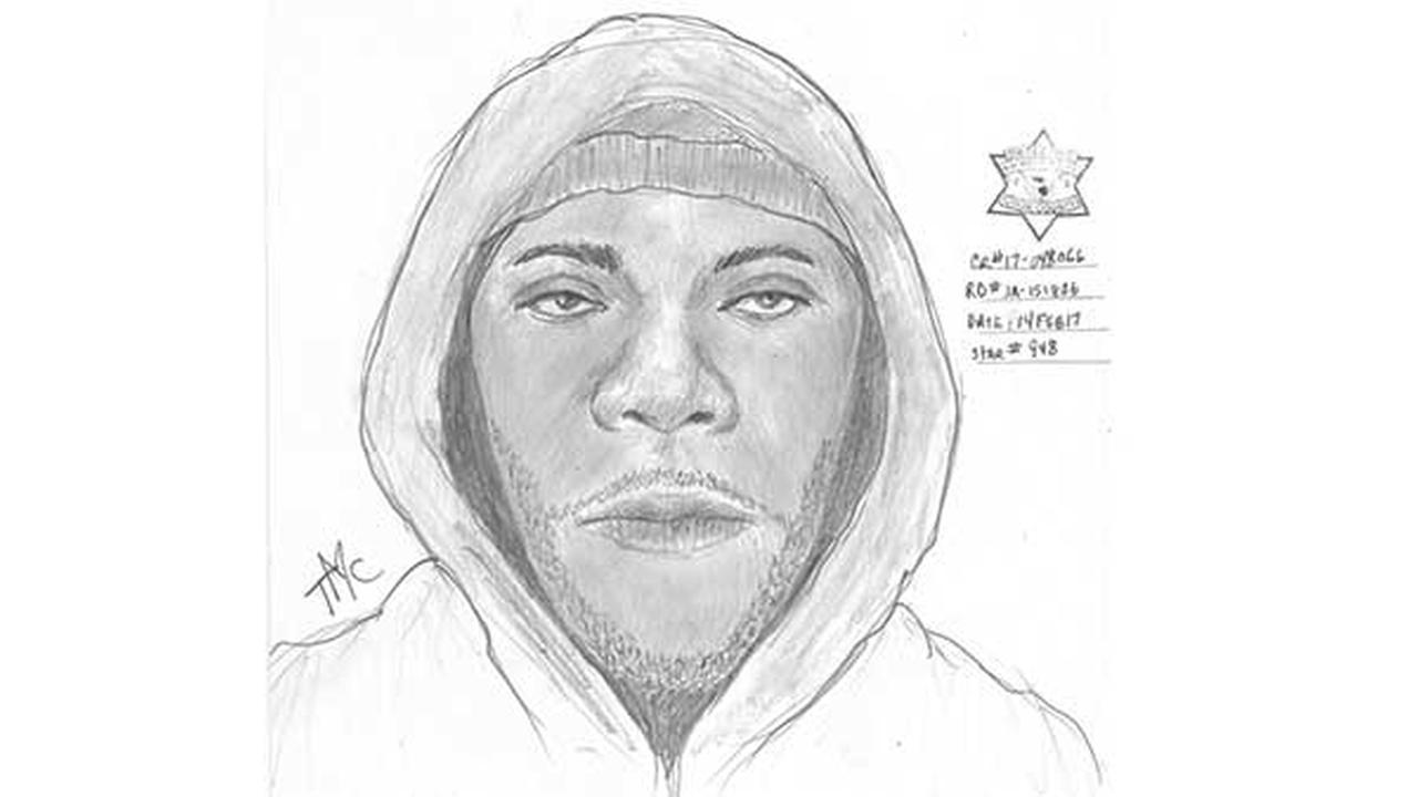 Chicago Police: Woman sexually assaulted in Morgan Park neighborhood