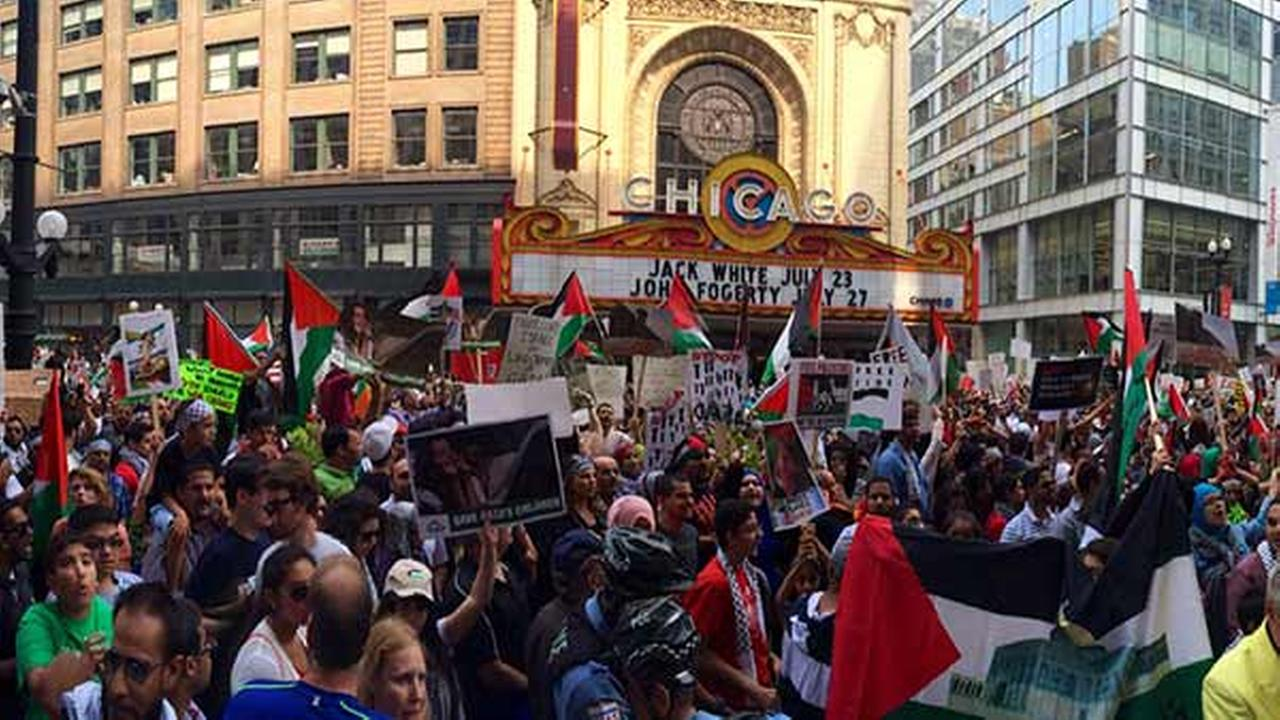 Members of the Chicago Coalition for Justice in Palestine rally in downtown Chicago Sunday afternoon.