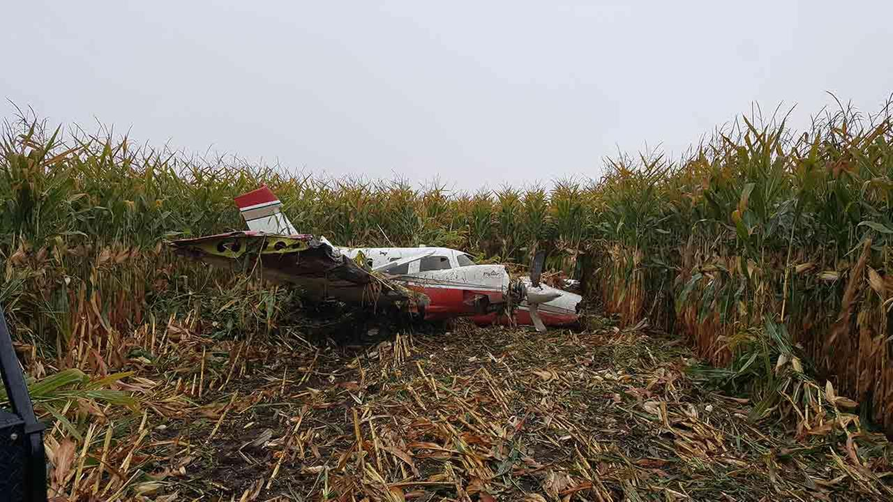 A small plane made an emergency landing in a Sugar Grove corn field Monday morning.