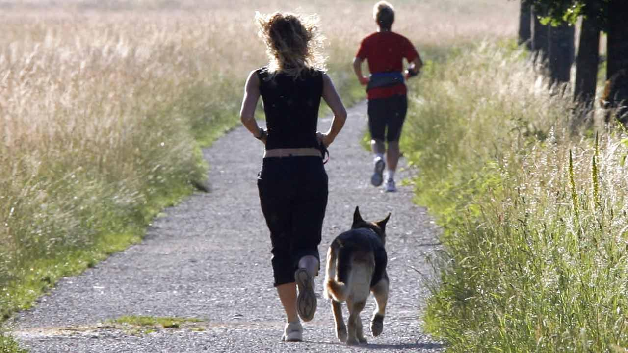 (FILE)A woman jogs with her dog near Freiburg,Germany.