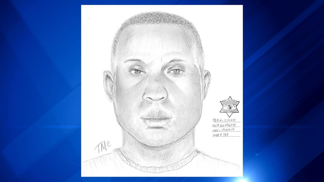 Chicago Police have released a sketch of a suspect in an attempted child luring case.