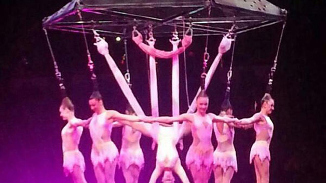 Circus accident
