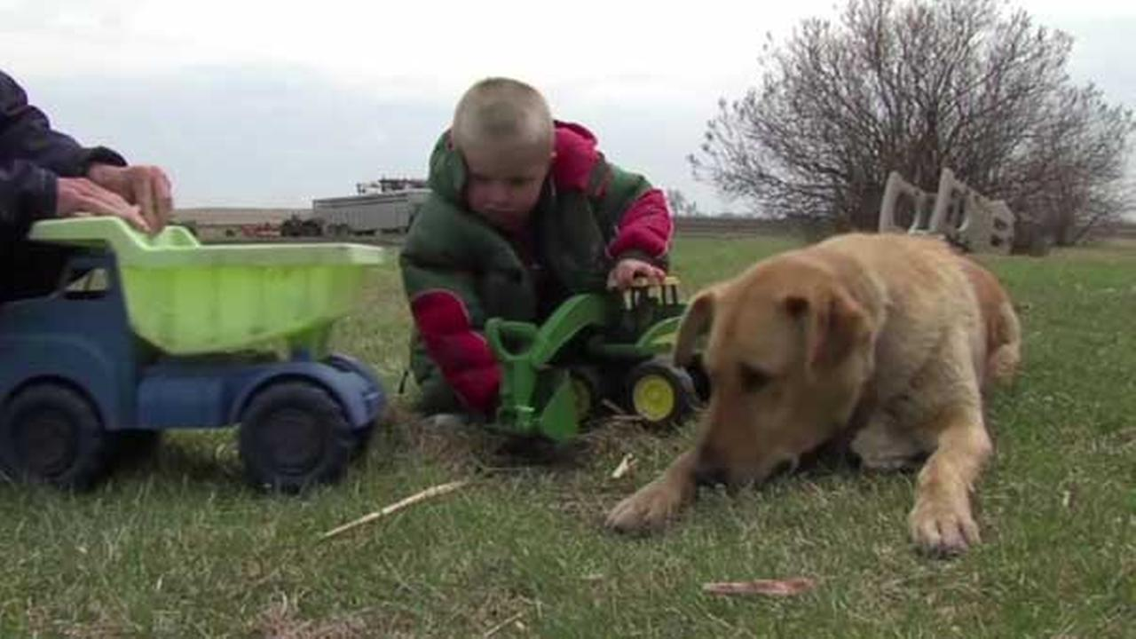 Dog protects missing boy, 3-year-old Carson Urness, family says
