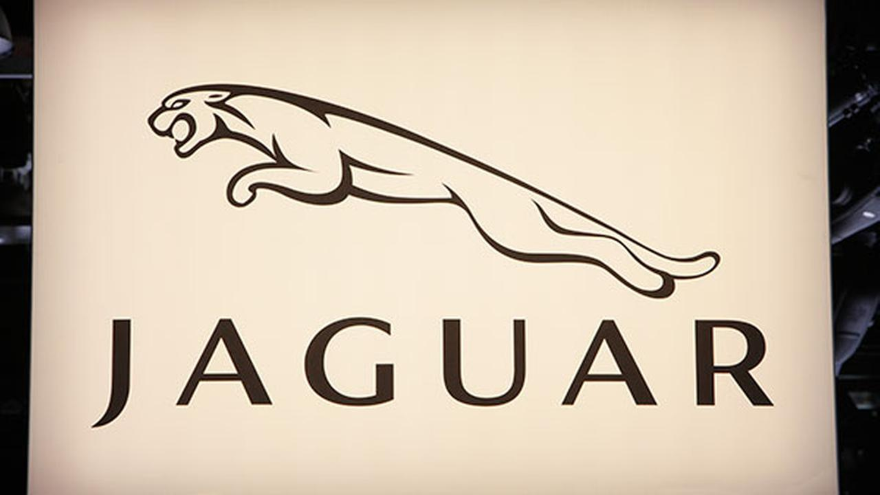 Jaguar logo is seen at the North American International Auto Show on Jan. 11, 2010 in Detroit.