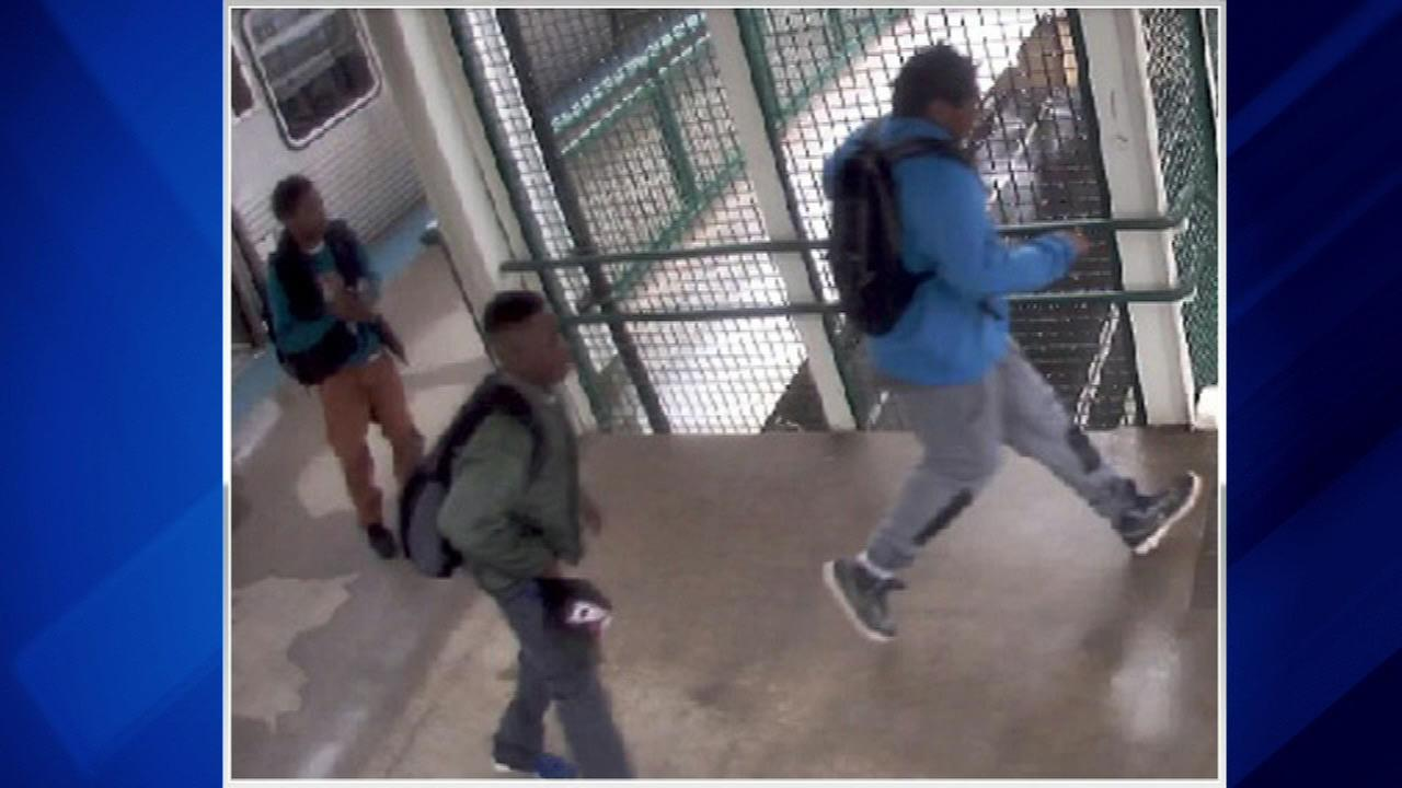 Police search for suspects in cellphone robberies on CTA Green Line