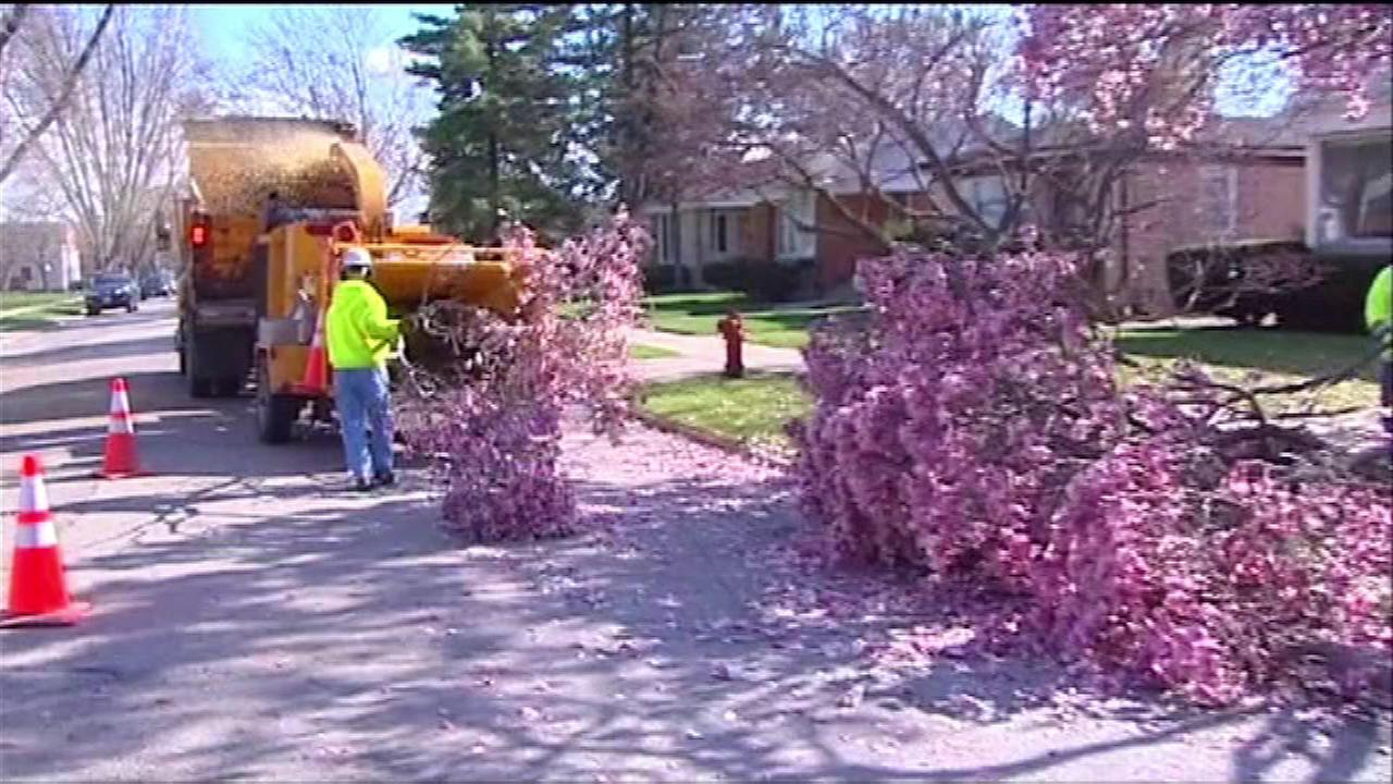 Wind causes damage in Skokie