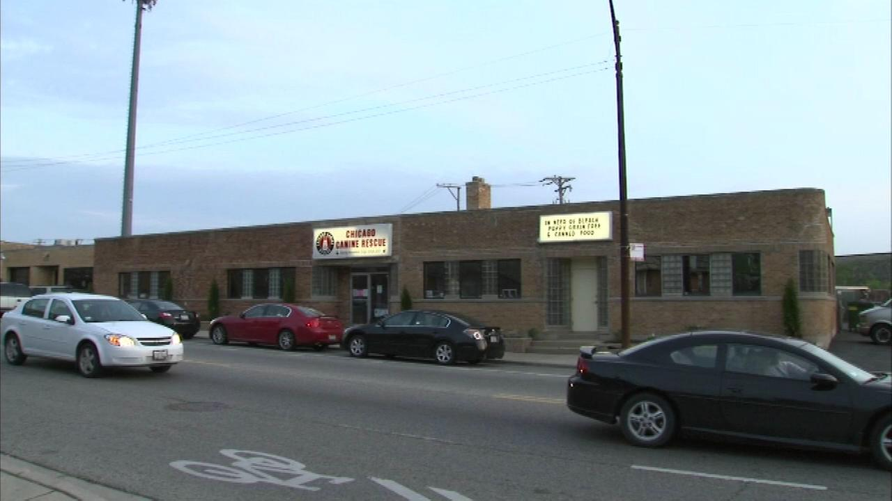 A local animal shelter is closed indefinitely after an animal there came down with the dog flu.