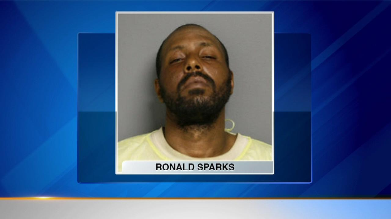 Man charged in North Side CTA Red Line attack