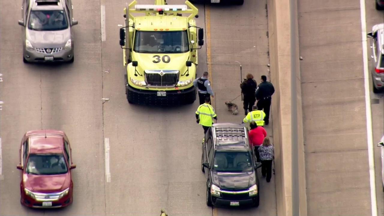 Dog rescued from Kennedy Expressway