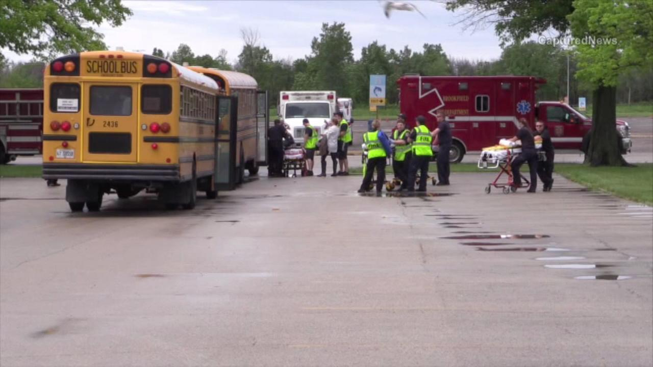 Ten students hospitalized with minor injuries after school bus crash at Brookfield Zoo