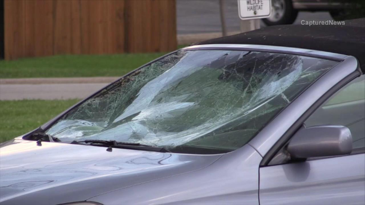 Two people are in the hospital after a car hit them in northwest suburban Palatine.