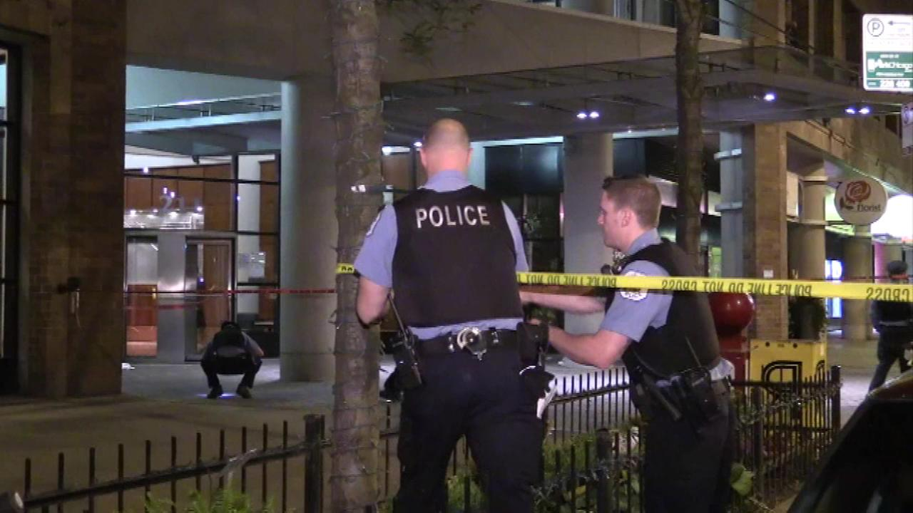 A 19-year-old was shot Saturday night in the 200-block of East Ohio Street in the Streeterville neighborhood, police said.