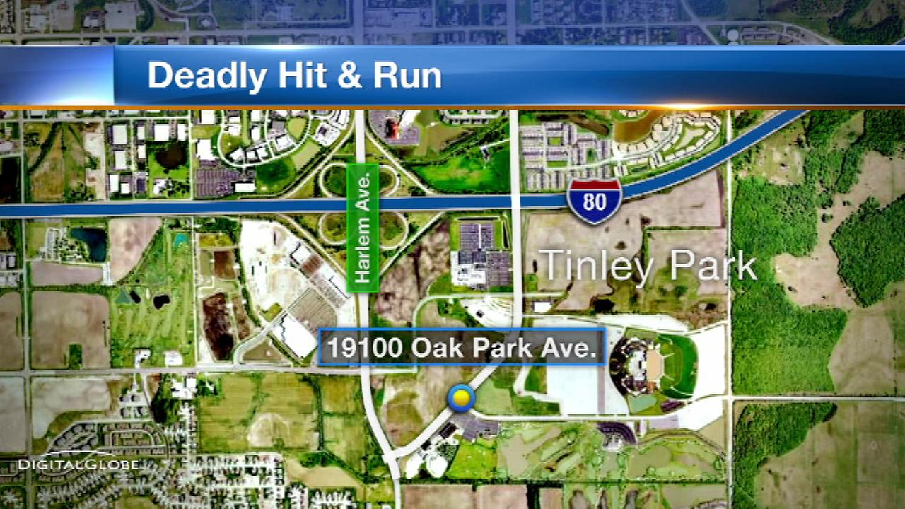 A 54-year-old woman was killed in a hit-and-run accident in south suburban Tinley Park, police said.