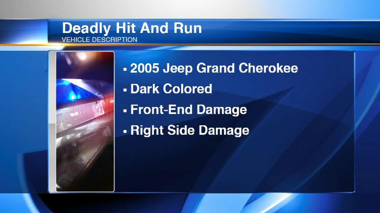 Driver sought in deadly Tinley Park hit-and-run