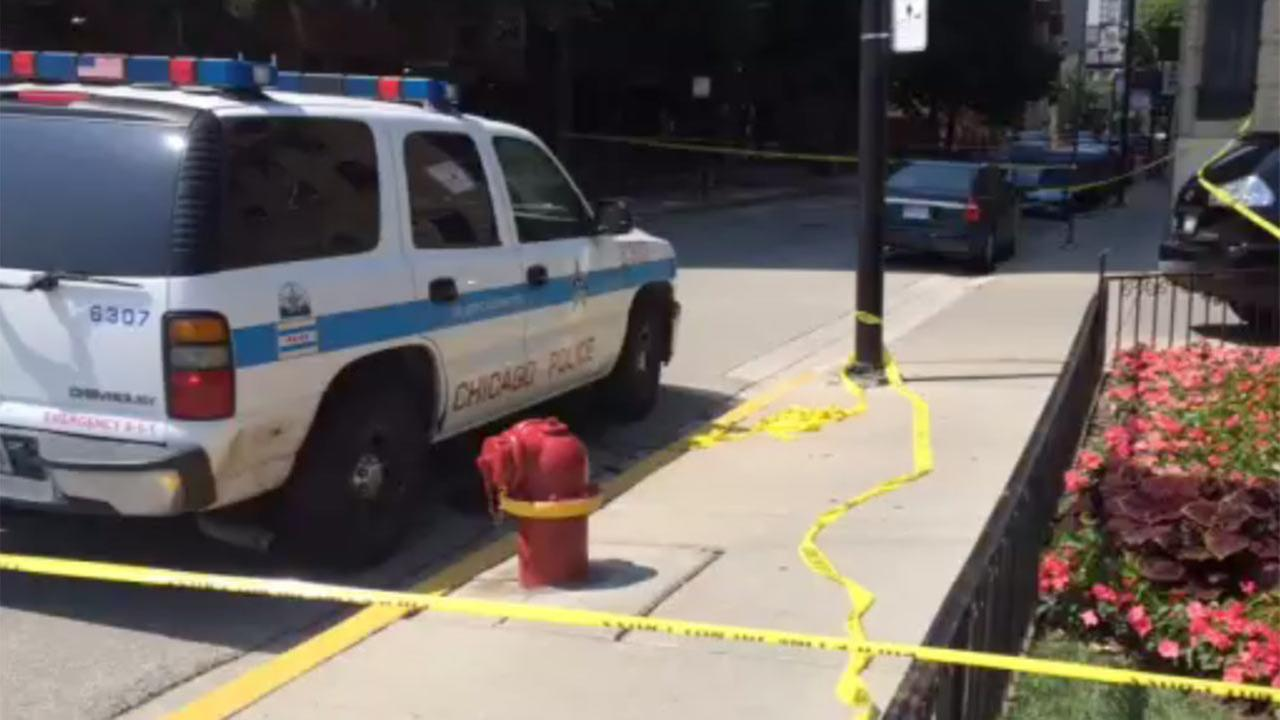 Police on Schiller Street near the 1400-block of Lake Shore Drive Saturday.