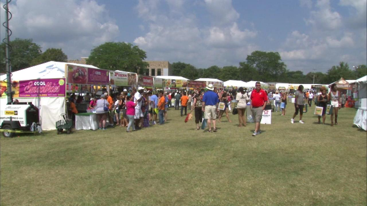 The 10th annual Veggie Fest attracted hundreds of healthy food lovers Sunday in the western suburbs.