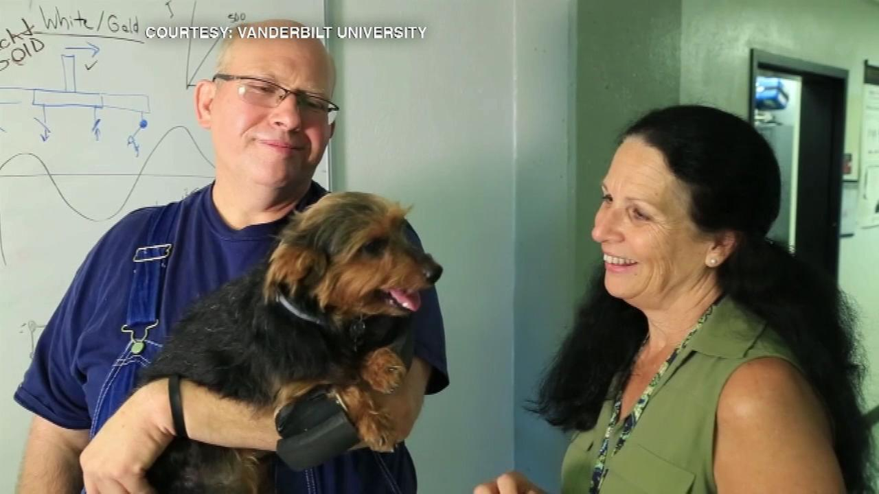 Bogey the dog walks again with help from Vanderbilt students