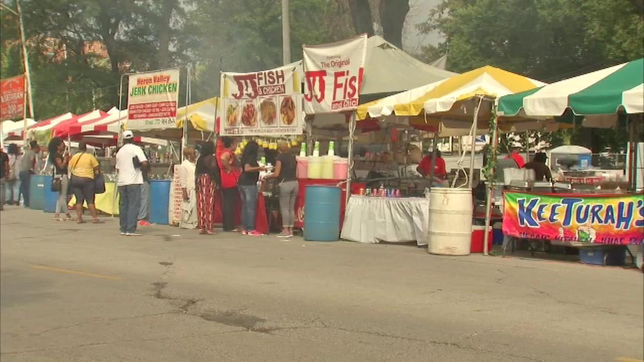 Chicagos annual African Festival of the Arts began its 26th year on the citys South Side Friday.