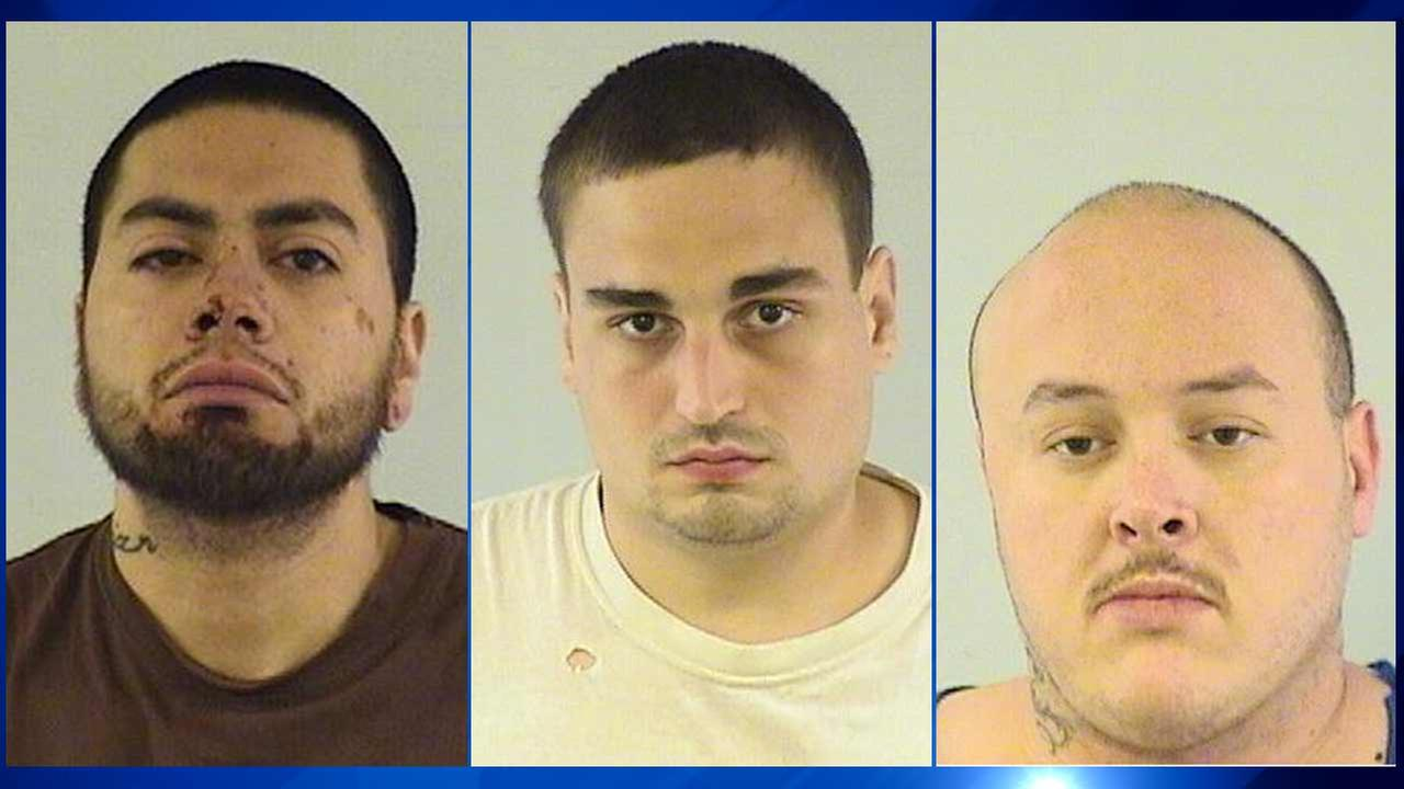A physical confrontation at a wedding in the far north suburbs early Monday morning resulted in three men being arrested and charged with mob action and assault, police say.
