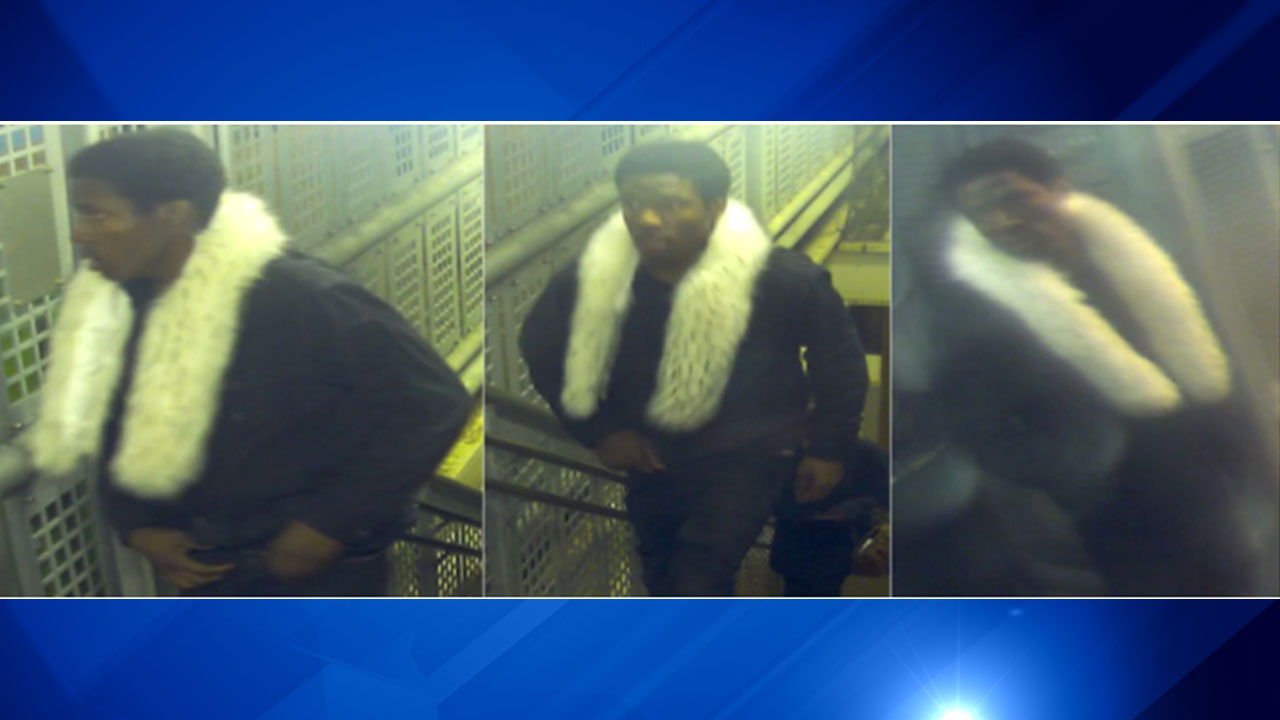 Police seek suspect in robbery at Sedgwick Brown Line station