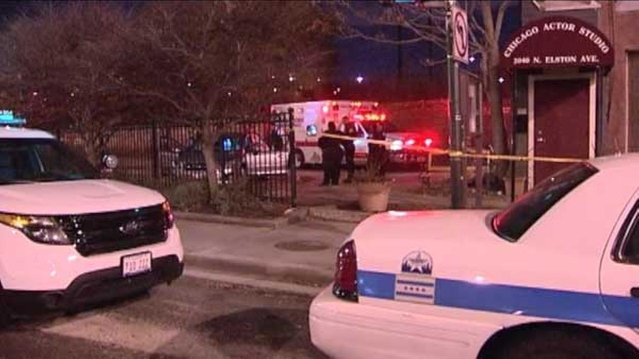 A 36-year-old man was attacked outside the Chicago Actors Studio in the citys Bucktown neighborhood.