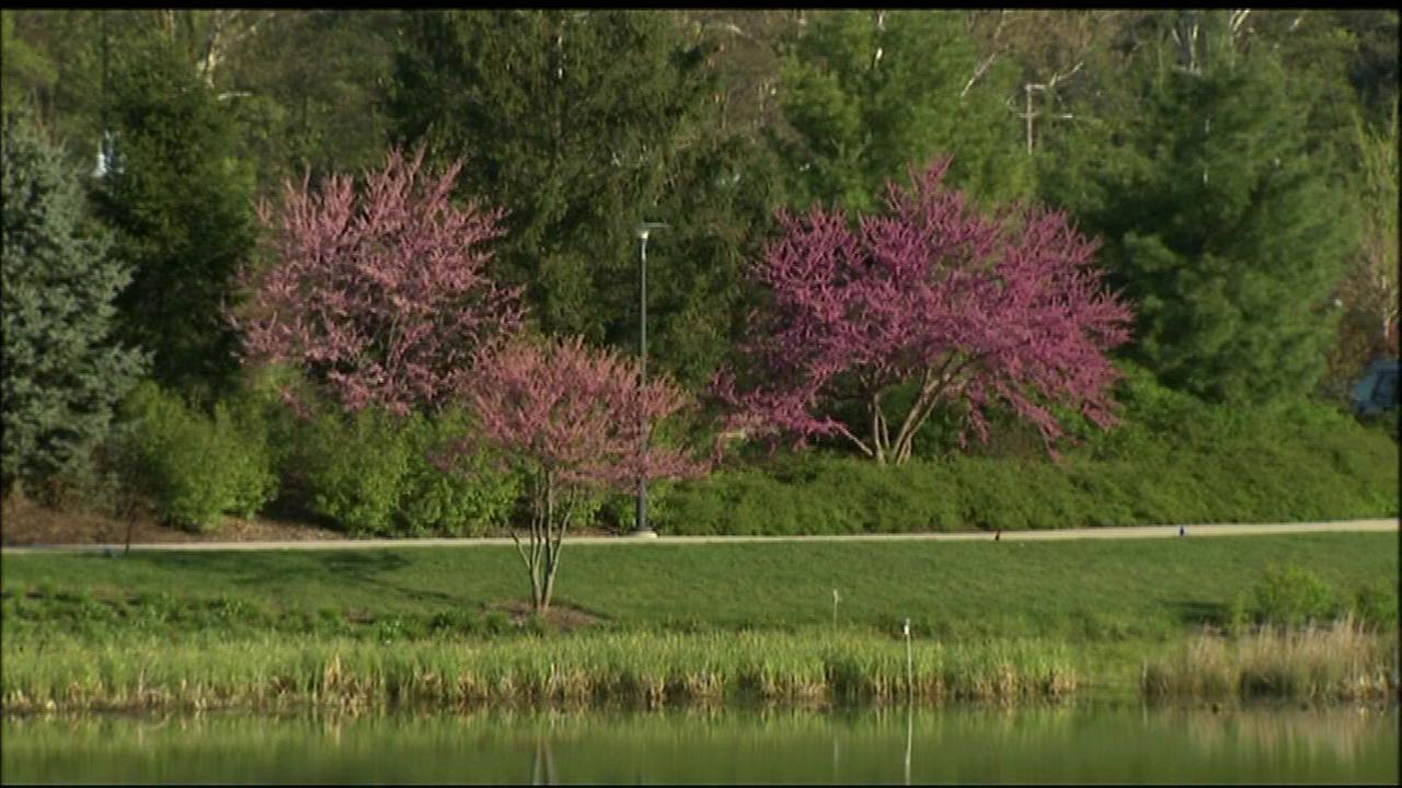 Morton Arboretum welcomes 1 million visitors in 2015
