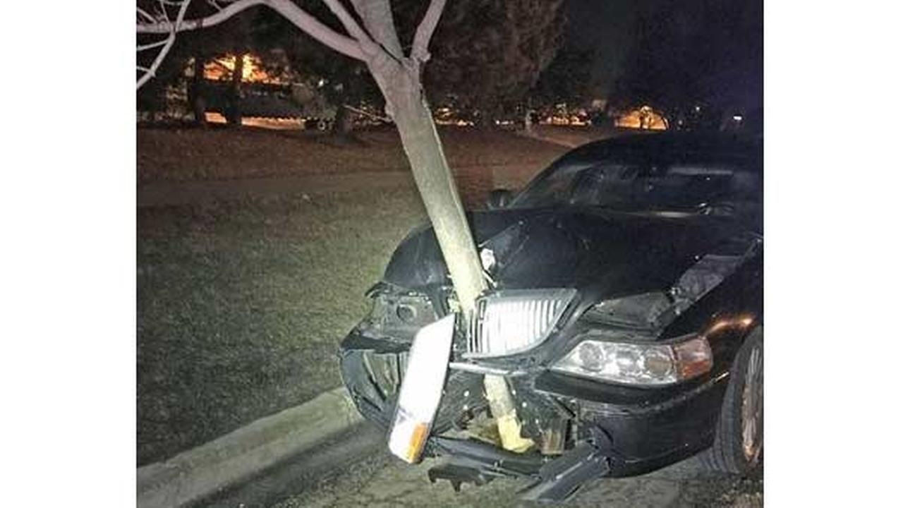 Alleged Illinois DUI driver arrested with 15-foot tree wedged in grille