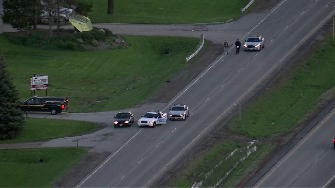 Woman fatally struck by Ford Mustang in Volo