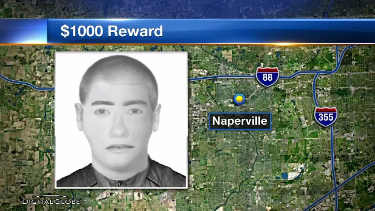 Reward offered in Naperville robbery of professional gambler
